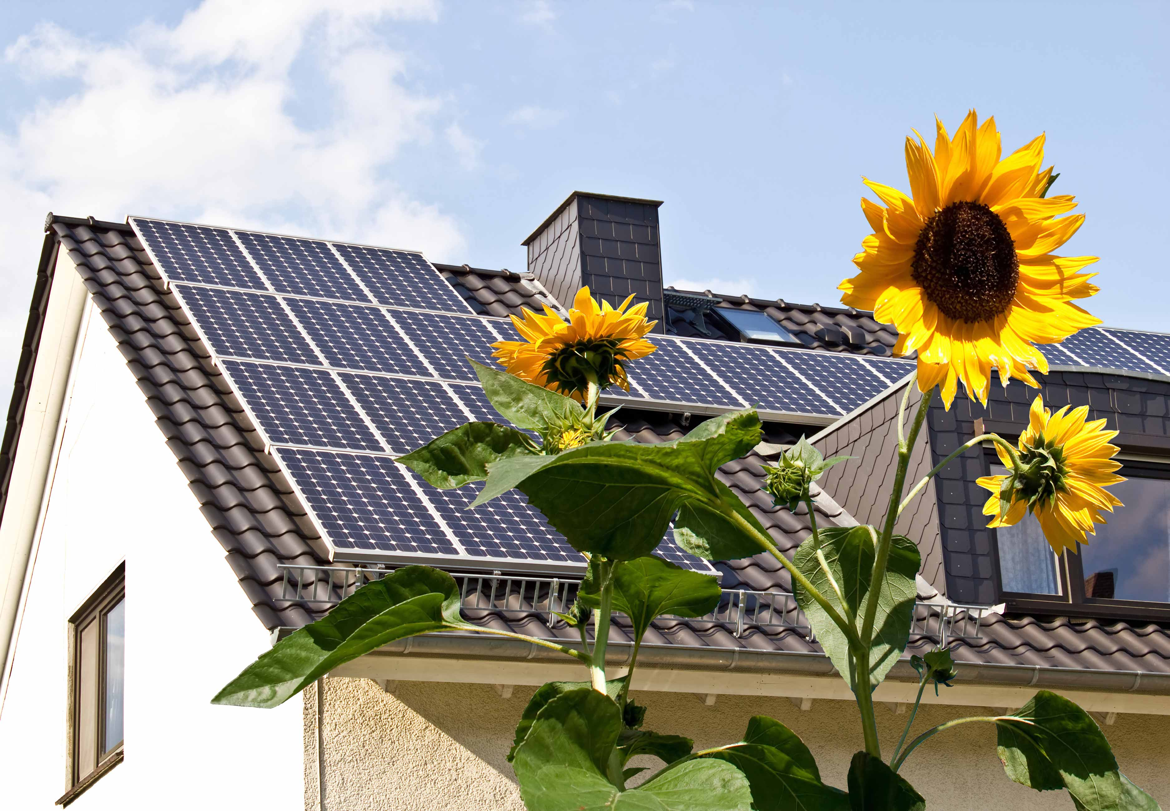 Can Solar Panels Energize Your Real Estate Investment