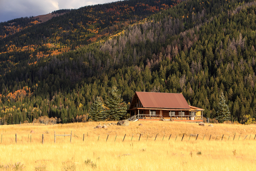 What to Know Before Purchasing Remote NW Property
