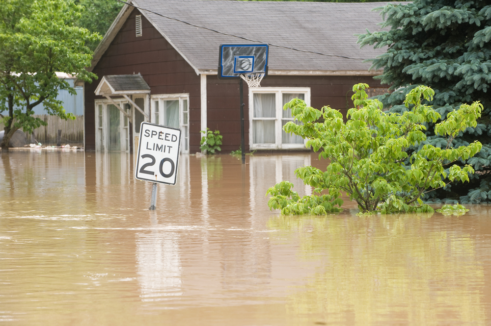 flooded street, flooded house