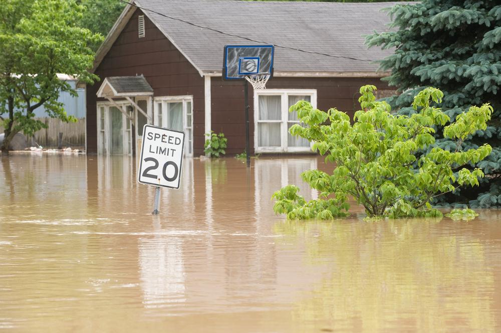 flooded street, flooded house