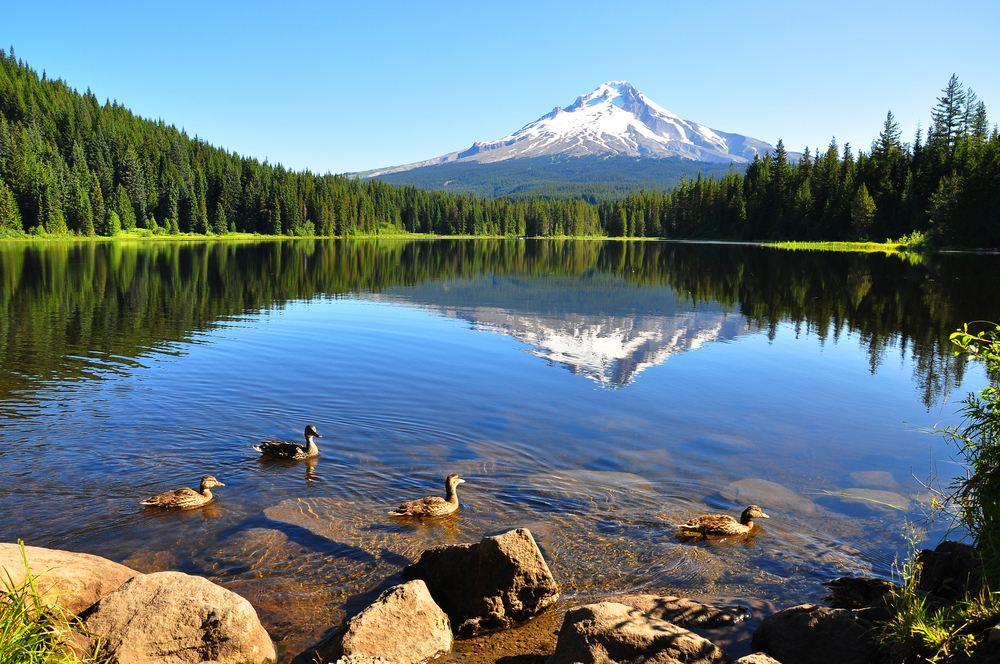 Trillium Lake, Mt Hood, Oregon, Pacific Northwest